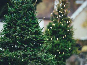 Nütterden, 02.12.2017 — Weihnachtsbaum schmücken