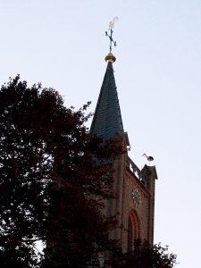 Einmaliger Anblick: ein Storch auf dem Turm der Nütterdener Kirche